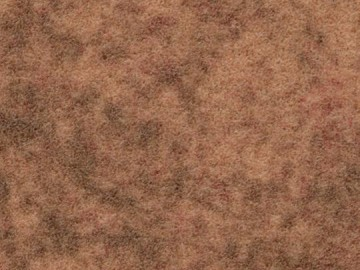 Forbo Flotex Calgary s290030-t590030 spa, s290028-t590028 ginger