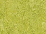 Forbo Marmoleum Modular, t3224 chartreuse