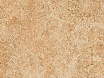 Forbo Marmoleum Real, 3075-307535 shell