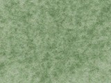 Flotex Calgary, s290016-t590016 apple.jpg